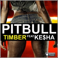 Timber (Acoustic Version)