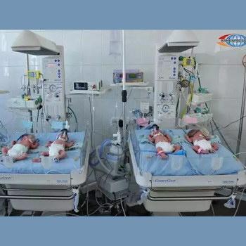 Армен Григорян стал дядей четверых малышей