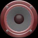 Радио Жаба